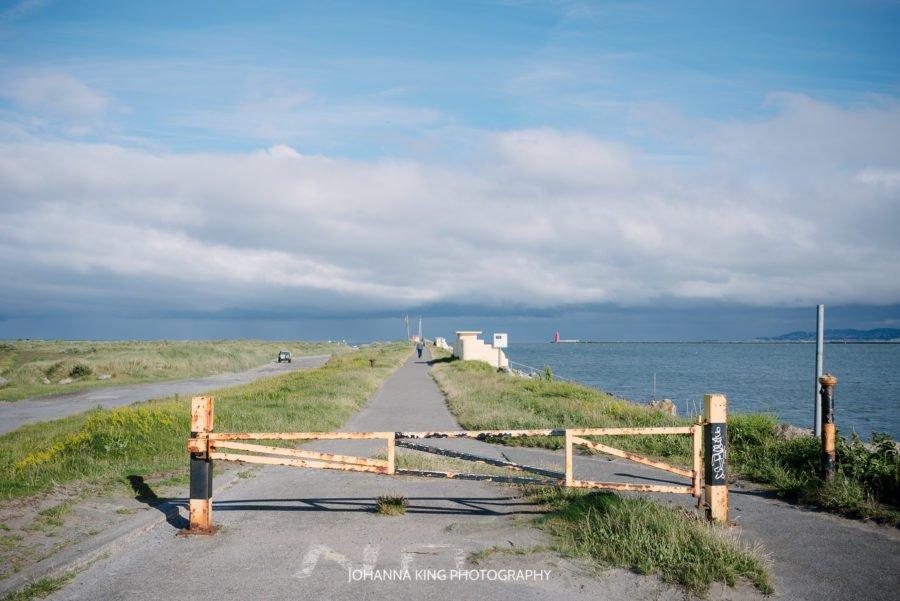 wooden bridge bull island family photography
