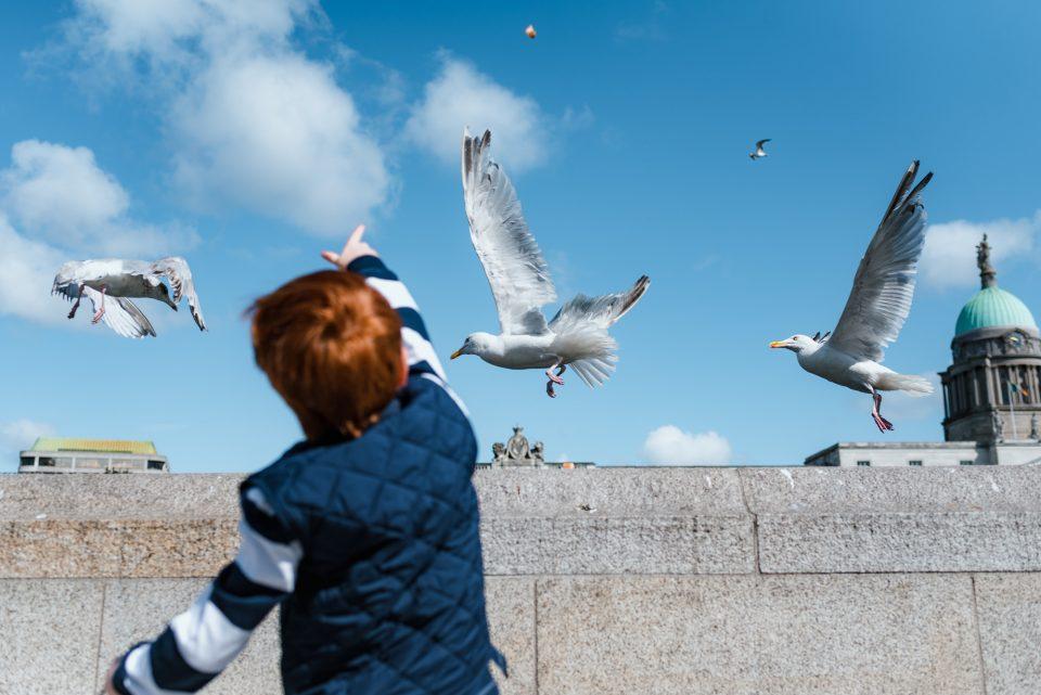 Little boy throwing bread at seagulls in Dublin near the Liffey